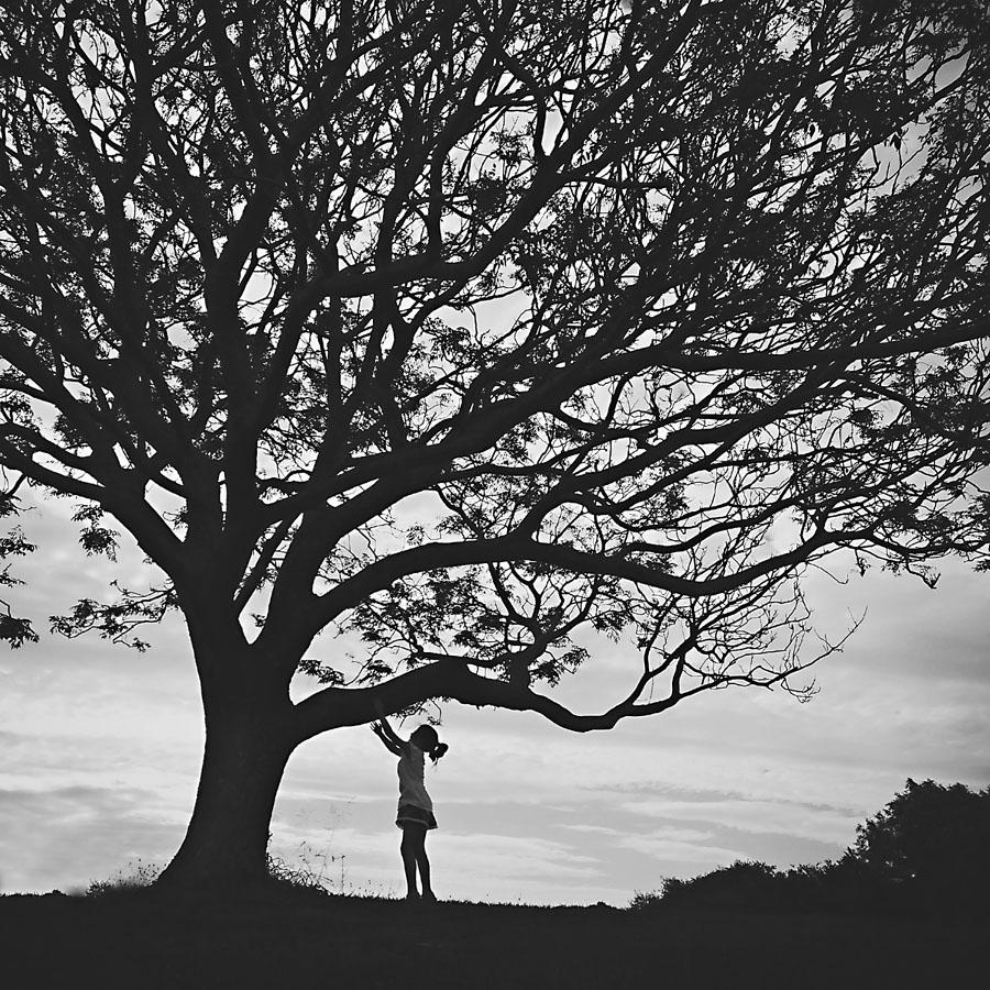Jody Ryan Photography